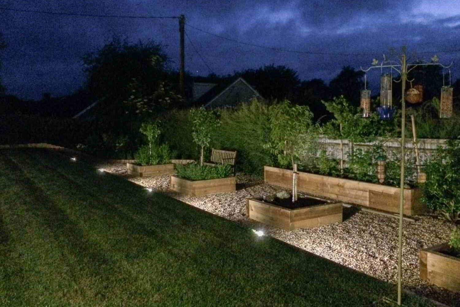 landscaped garden at night